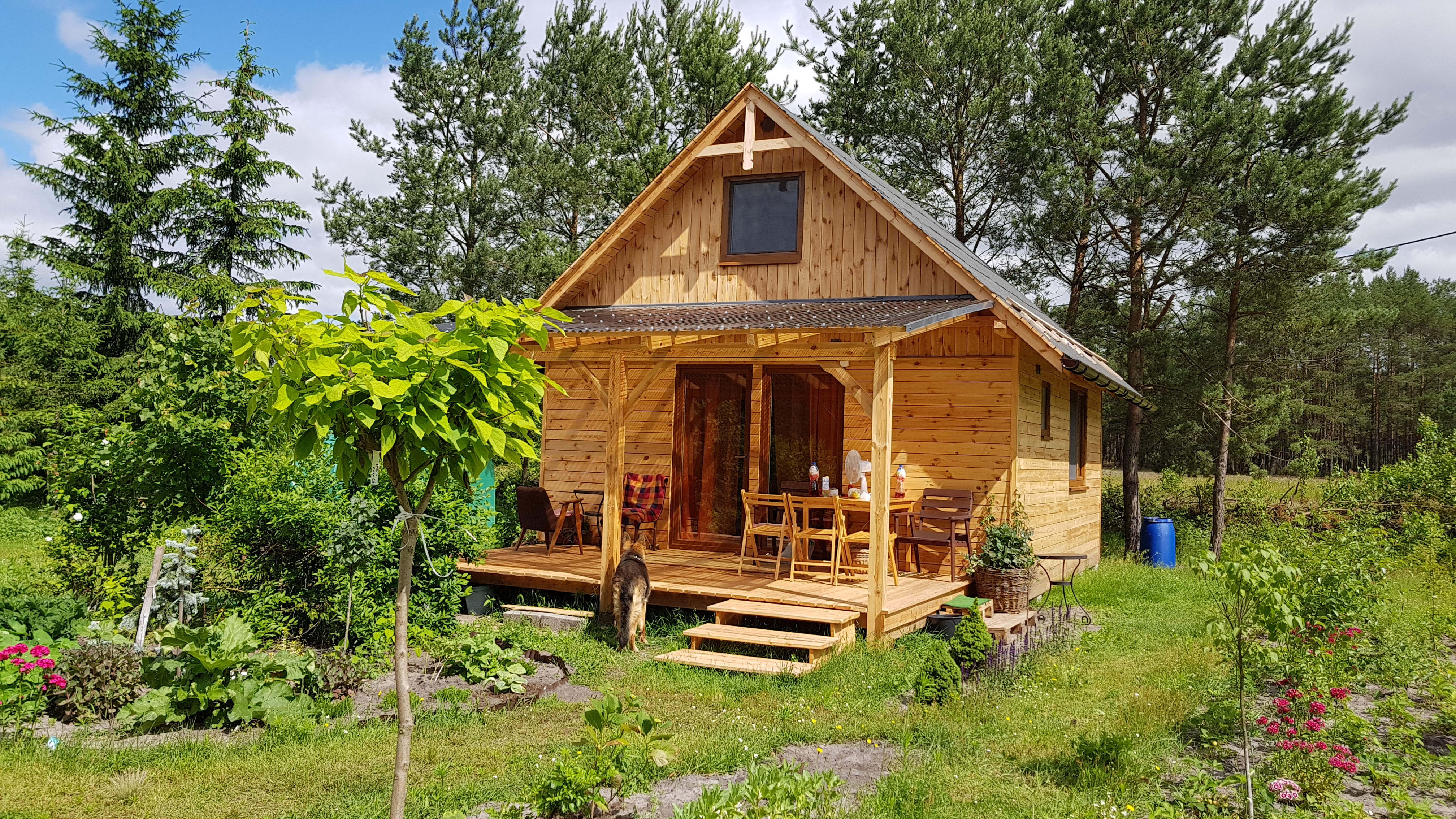 Wooden house escape poland poland forest holidays for Wooden cabin house